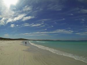 Waychinicup NP Cehyne Beach