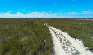 Cape Aride NP Telegraph Track